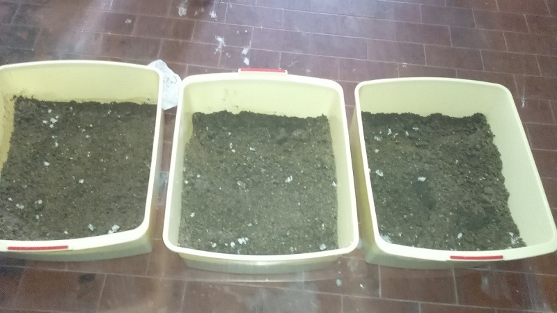 Becinelle e Sabbia Umida per Stampo